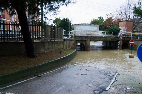 Riconfermato l'appalto per la gestione della piscina comunale
